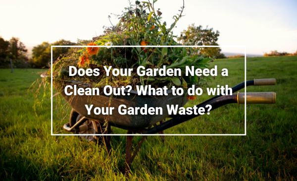 Waste Removal Wirral - Does Your Garden Need a Clean Out Garden